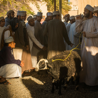 Goat Traders